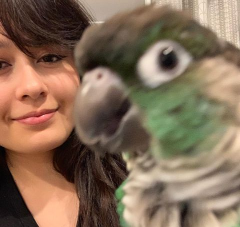 Jaiden Animations in a black t-shirt with her parrot.