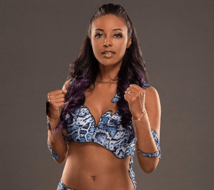 Brandi Rhodes Bio: Net Worth, Ethnicity, Tattoo, Wedding, Cody Rhodes Wife, Kids, Brother, Wiki